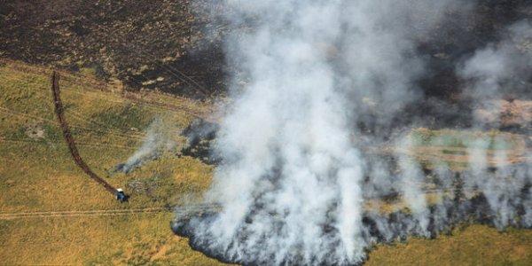 В Гродненской области наконец потушили самый крупный в этом году пожар
