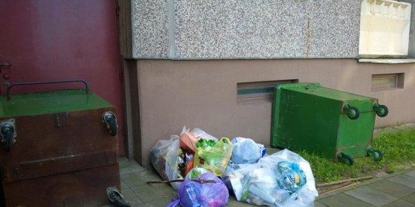 Лидчане не желают выносить мусор в контейнеры и сваливают пакеты у входа в подъезд