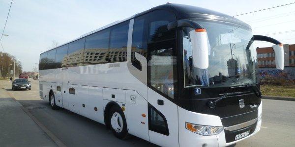 Как арендовать автобус на свадьбу или для трансфера в аэропорт?
