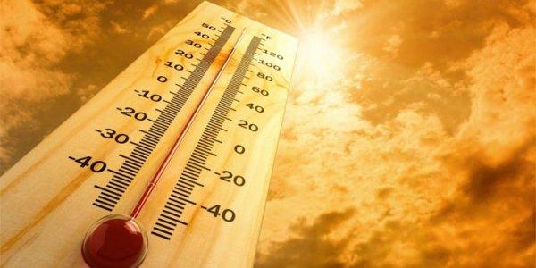 Раз — и сразу лето. В воскресенье в Лиде 10 градусов тепла