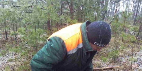 Под Лидой сотрудник службы отлова спас зайчика, провалившегося в колодец (Видео)