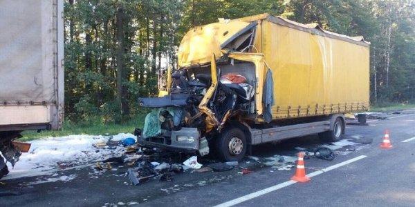 В результате ДТП под Гомелем 28-летний водитель, житель Лиды, от полученных травм умер на месте происшествия