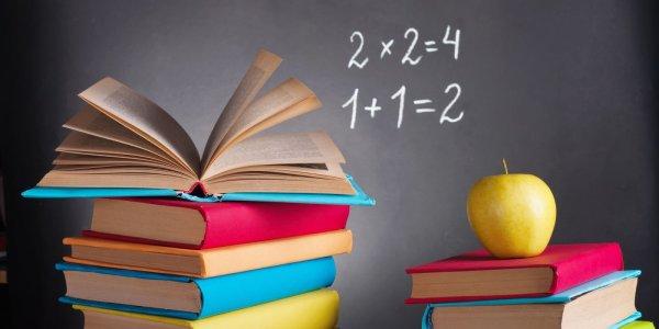 Стало известно, стоимость учебников для школьников в этом году