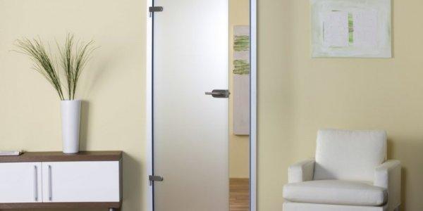 Как выбрать стеклянную дверь для интерьера