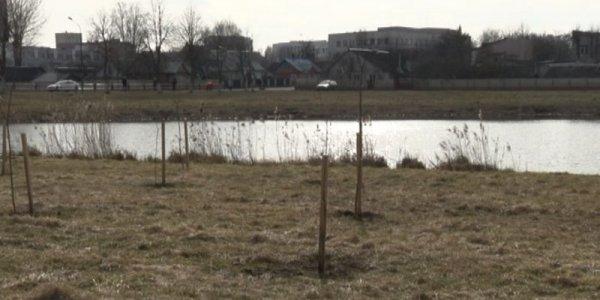 В Лидском районе проходит добровольная экологическая акция