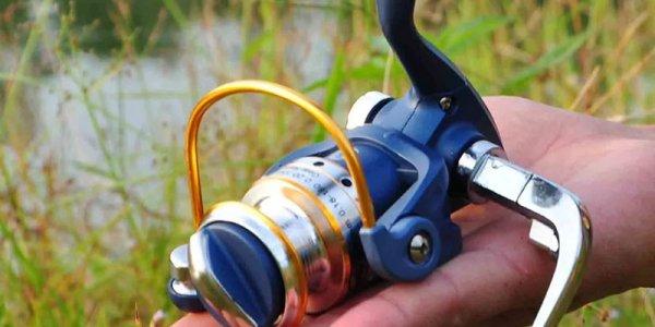 Выбираем катушку и леску для матчевой рыбалки